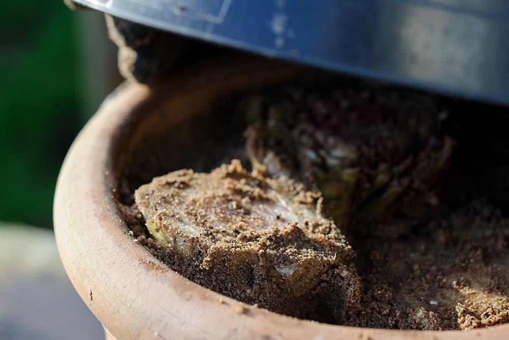 Zet een pot over de wortels om de witlof te trekken.