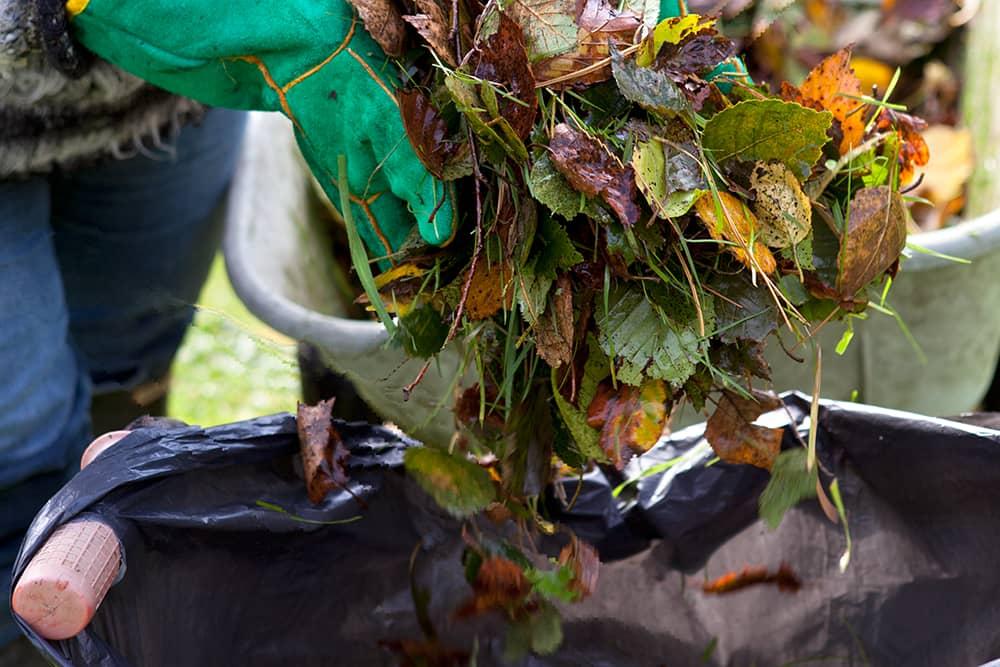 bladaarde maken van herfstbladeren
