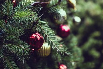 kerstboom langer mooi houden