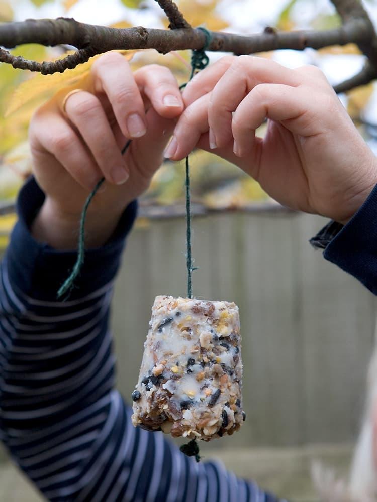 Hang de zelf gemaakte vetbollen op.