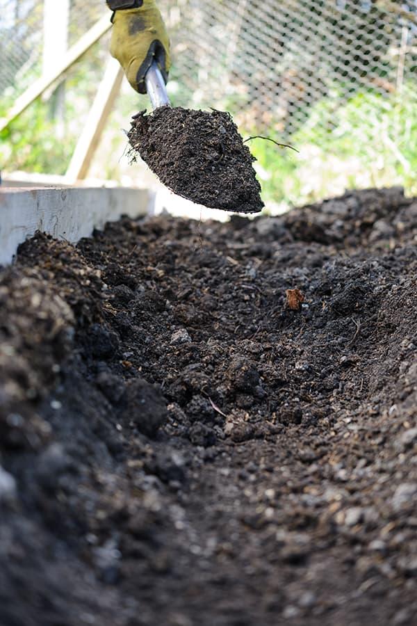 Bereid je grond voor op het aardappelen kweken.