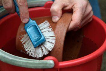 Kweekpotten schoonmaken voor het zaaien