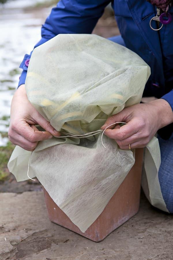 Bescherm planten met vliesdoek