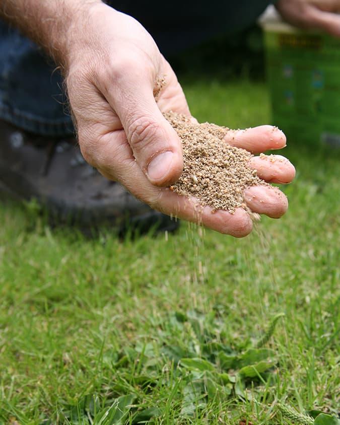 Voed het gras met gazonmest