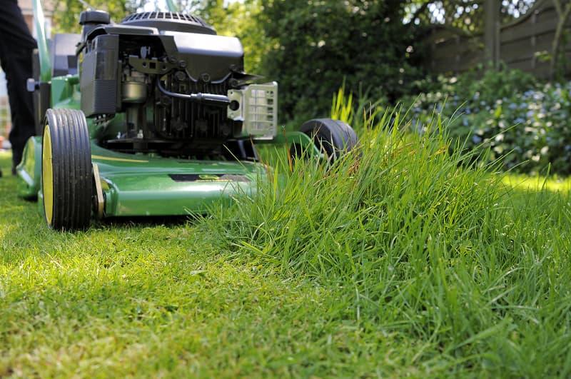 Maai een deel van het gras kort