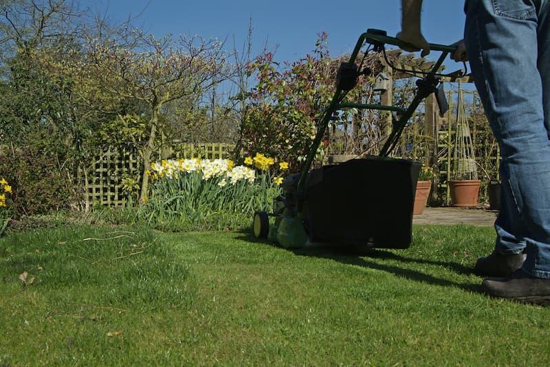 Gras maaien in het voorjaar