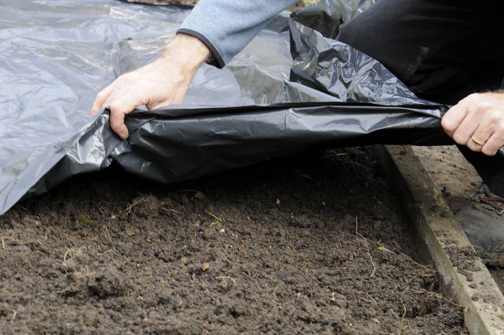 De grond opwarmen met een plastic zeil