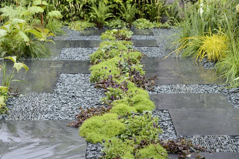 Zet planten tussen tegels