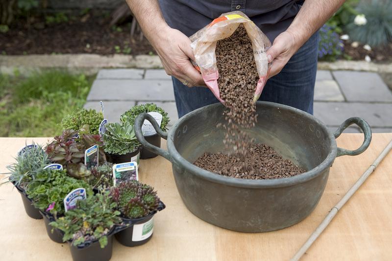 Moderne rotstuin: meng rotplanten grond