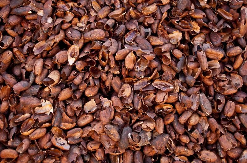 cacaodoppen tegen katten