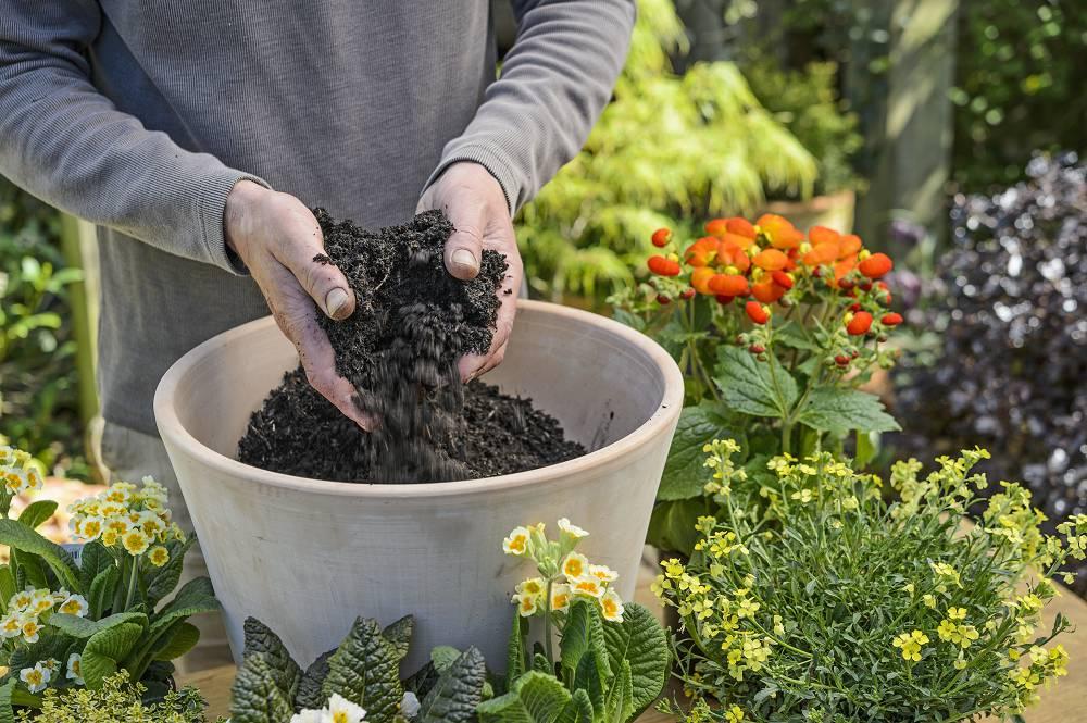 Checklist voor de tuin week 18: lentepotten opruimen