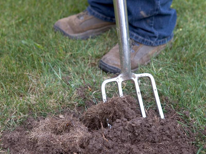 Gras zaaien ondergrond