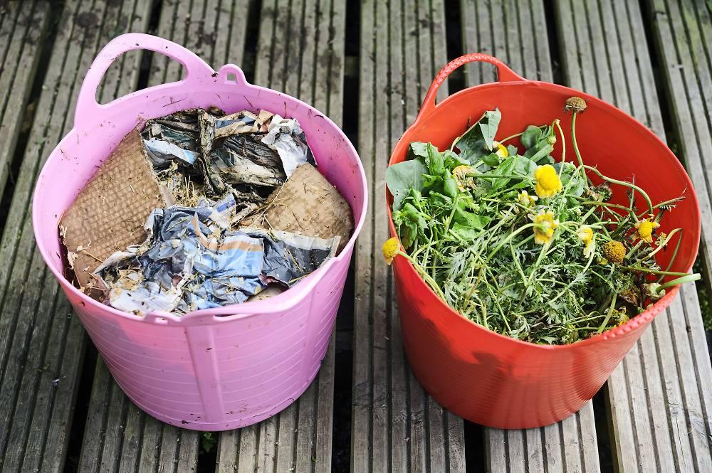 compost maken tips