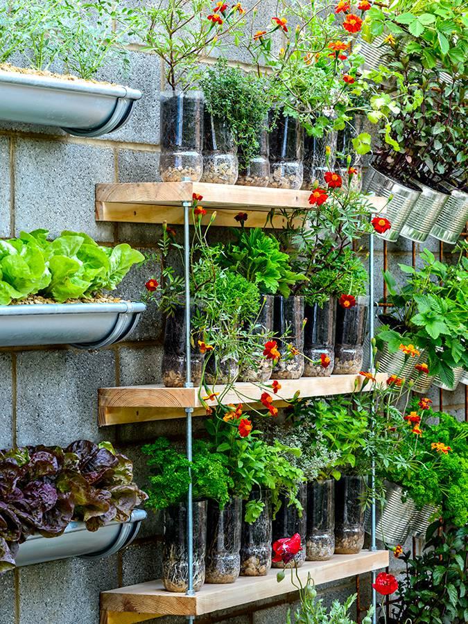 wandplank voor planten
