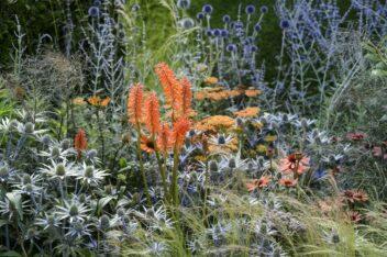 Kleuren combineren in de tuin