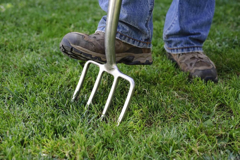 checklist voor de tuin week 41